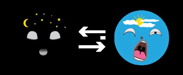 sommeil-diagramme-fleches-blanches-droupix