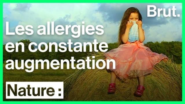augmentation-allergies-europe