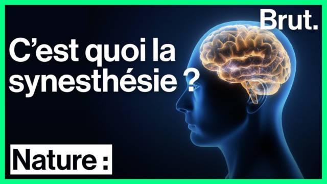 synesthesie-sens-cerveau